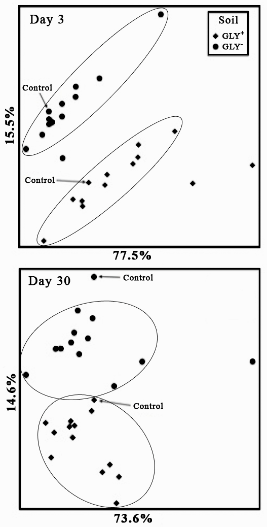 Microbial Community Structure in Soils Amended With Glyphosate ...