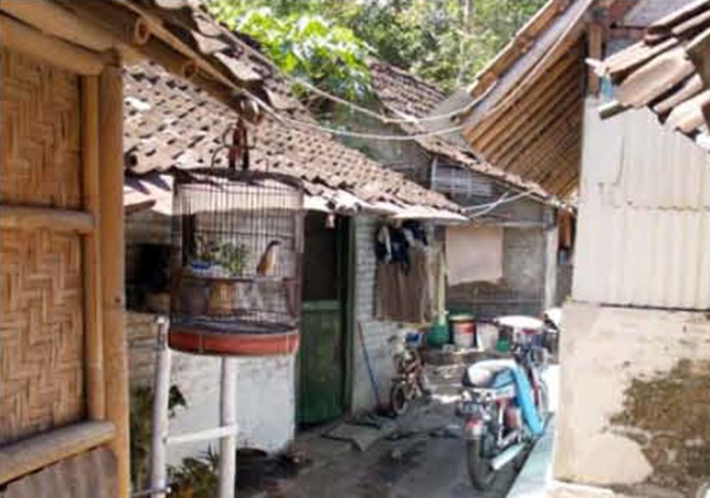impact of squatter settlements on the environment