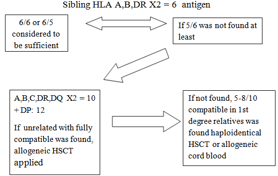 figure 1  algorithm of hla typing   donor selection in allogeneic stem cell transplantation