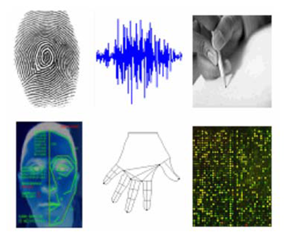 thesis on biometrics Thesis title using biometrics we have a highly professional and qualified writing staff our writers have great writing experience and always do their best to meet.