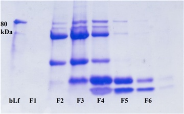 comparison of methods for the purification of goat