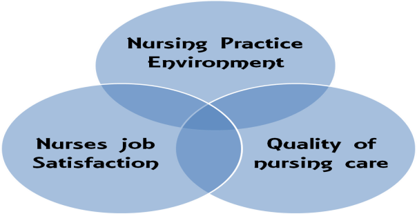 empowerment and job satisfaction in nursing educators This, in turn, has a motivating effect, and it raises overall job satisfaction1 creating an empowered team is a vital nurse leadership function that can significantly influence staff morale, productivity, staff retention and associated costs, patient care, quality, and patient safety2.