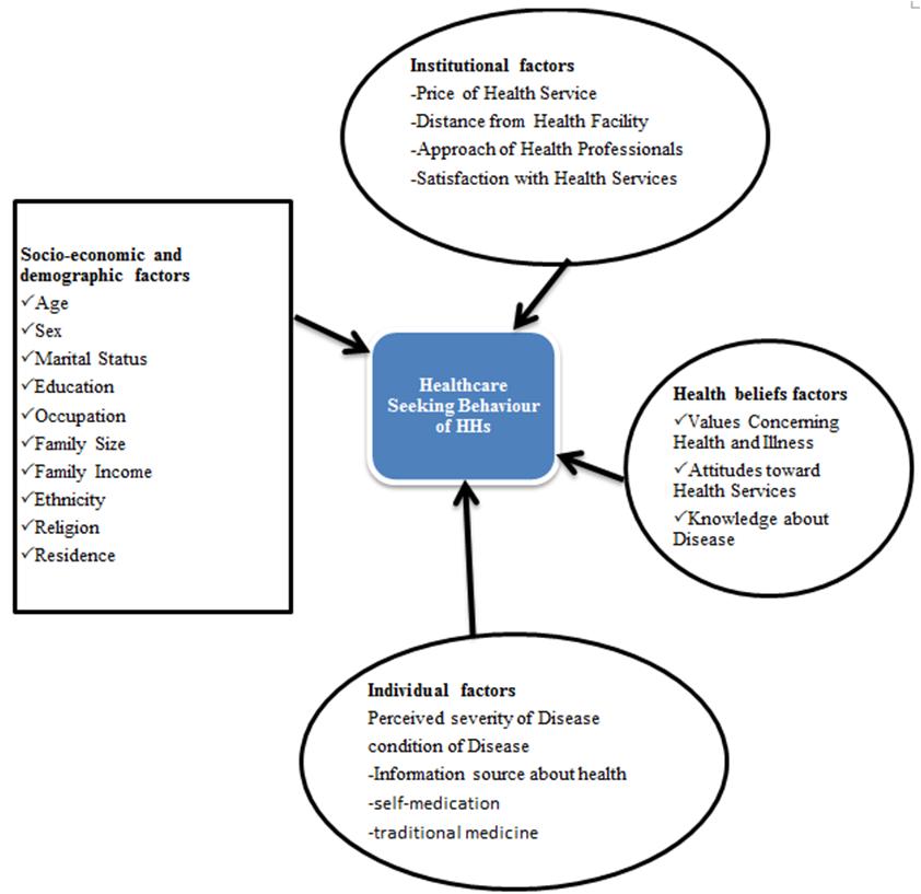Figure 1 Conceptual Framework Of Healthcare Seeking