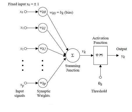 mutation process in kolkata