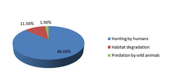 distribution and conservation status of chinese pangolin