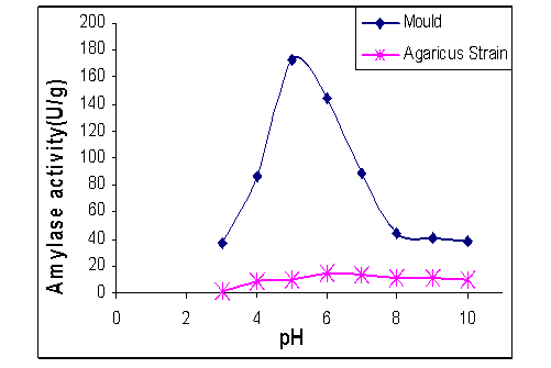 the effects of ph in beano Exp 6 formal lab report 113b - free download as word doc (doc / docx), pdf file (pdf), text file (txt) or read online for free.