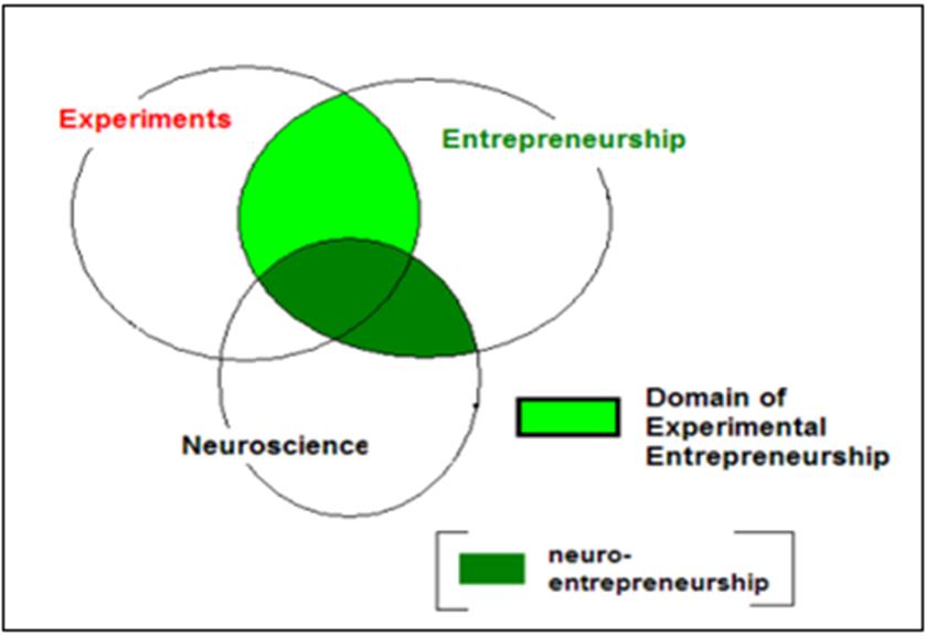 Figure 1  The domains of neuroentrepreneurship and