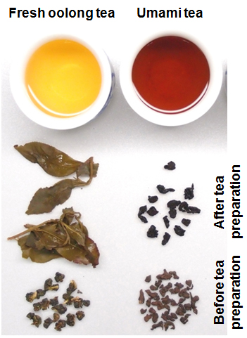 Figure 1 Tea Leaves And Infusions Of A Fresh Oolong Tea