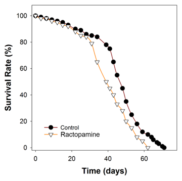 Potential Genitourinary Toxicity and Lithogenic Effect of Ractopamine