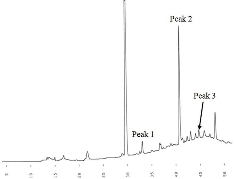 Figure 3  RP-HPLC chromatogram (280 nm) of the products of