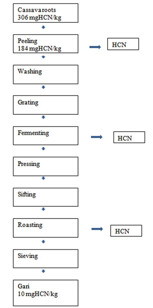 Figure 1 Process Flow Chart For Gari Production Showing Points Of