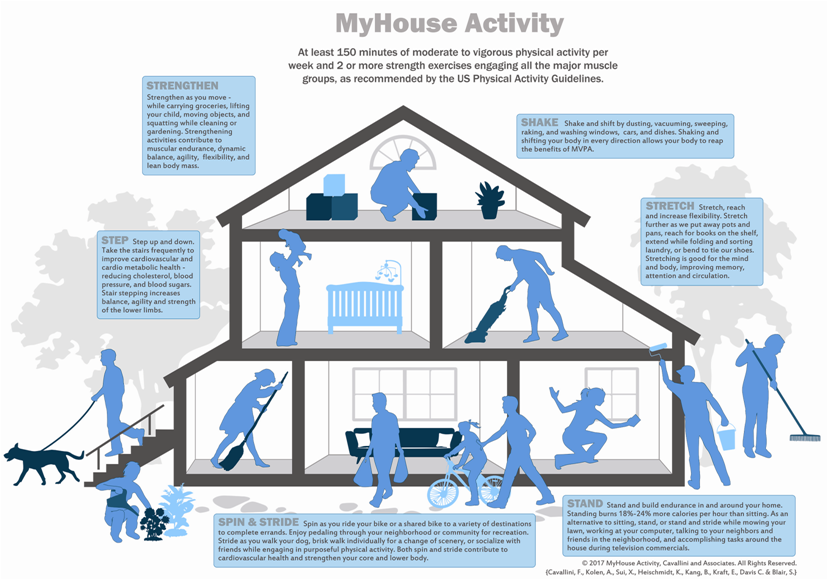 Figure 1  MyHouse Activity, Cavallini et al  All Rights Reserved
