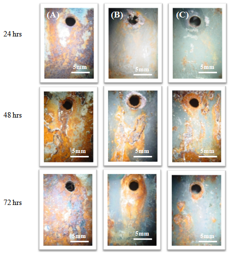 corrosion behavior of nanostructured tialn and alcrn thin coatings on astm