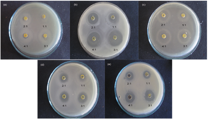 Figure 7. Antimicrobial activity of CdS nanoparticles ...