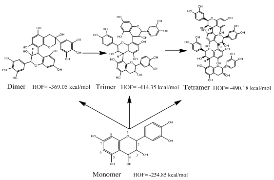 Evaluation of Antioxidant Activity of Tea Polyphenols by a