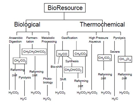 Hydrogen gas: production of hydrogen gas.