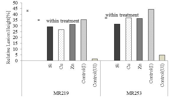 effects of silicon  copper and zinc applications on sheath blight disease severity on rice