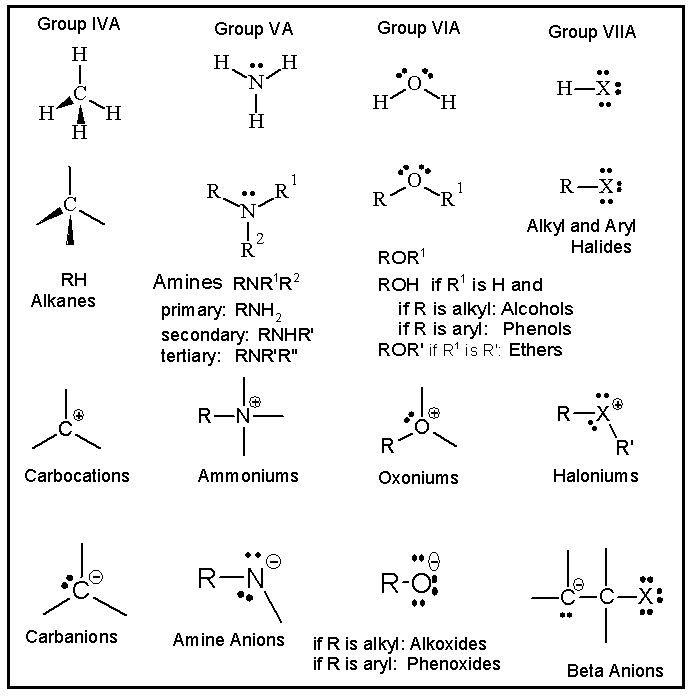 A hierarchical structure for an organic chemistry course table 1 single bonded functional group classes and their ionic forms in relation to the periodic table 7 reproduced with permission of the journal of urtaz Gallery