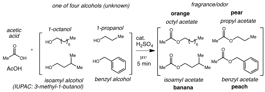 isoamyl acetate synthesis from fischer reaction Synthesis of esters using acetic anhydride1  this reaction, termed fischer esterification in honor of its discoverer, can be used to prepare a  propyl acetate .