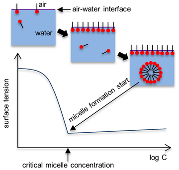 relationship between surface tension and concentration